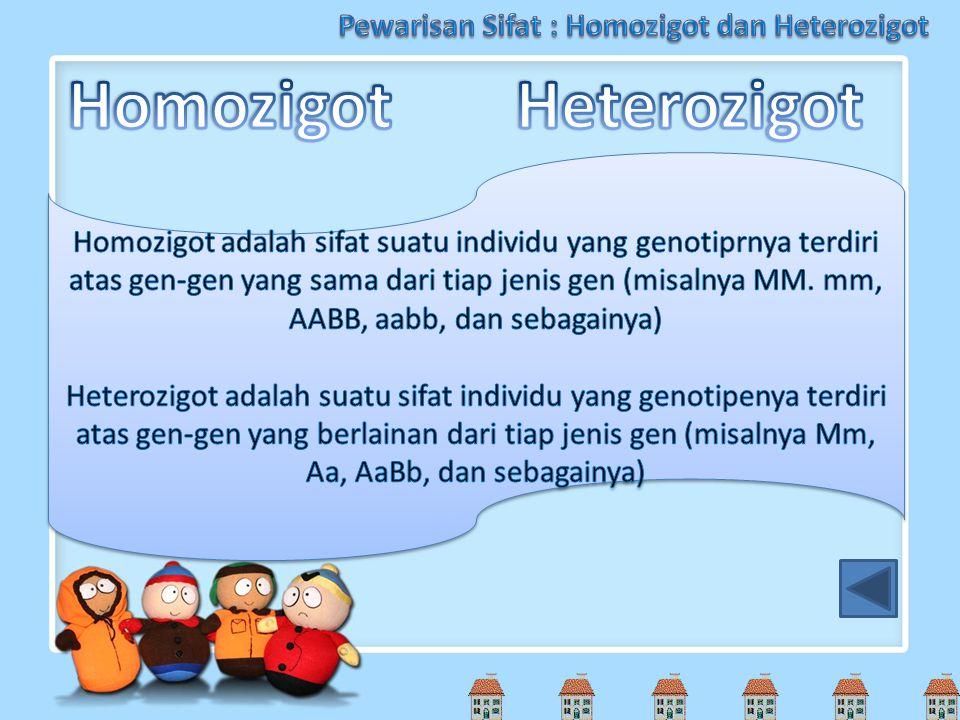 Pewarisan Sifat : Homozigot dan Heterozigot