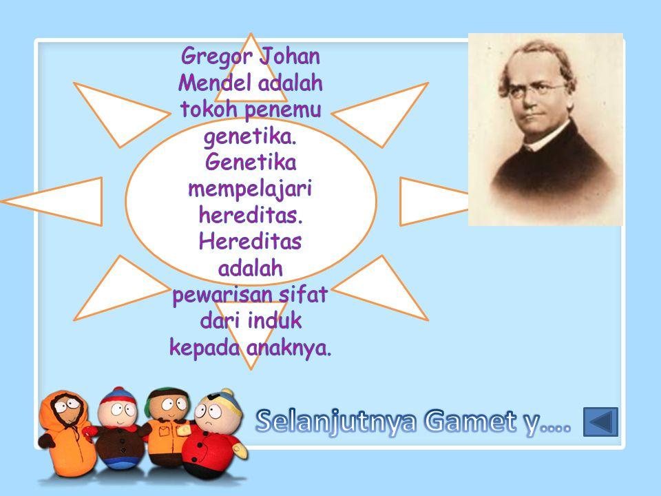 Gregor Johan Mendel adalah tokoh penemu genetika