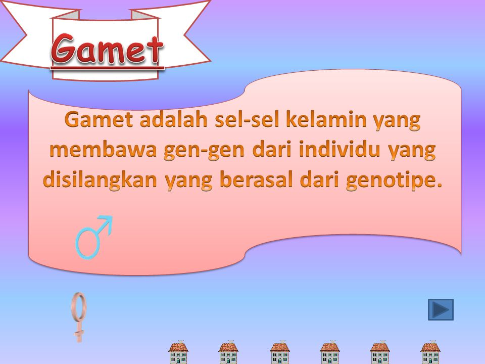 Gamet Gamet adalah sel-sel kelamin yang membawa gen-gen dari individu yang disilangkan yang berasal dari genotipe.