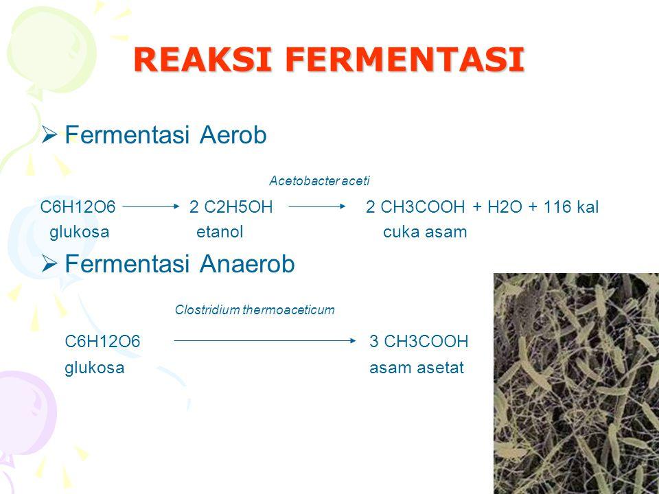 REAKSI FERMENTASI Acetobacter aceti Fermentasi Aerob