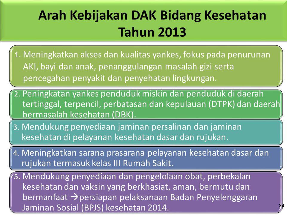 Arah Kebijakan DAK Bidang Kesehatan Tahun 2013