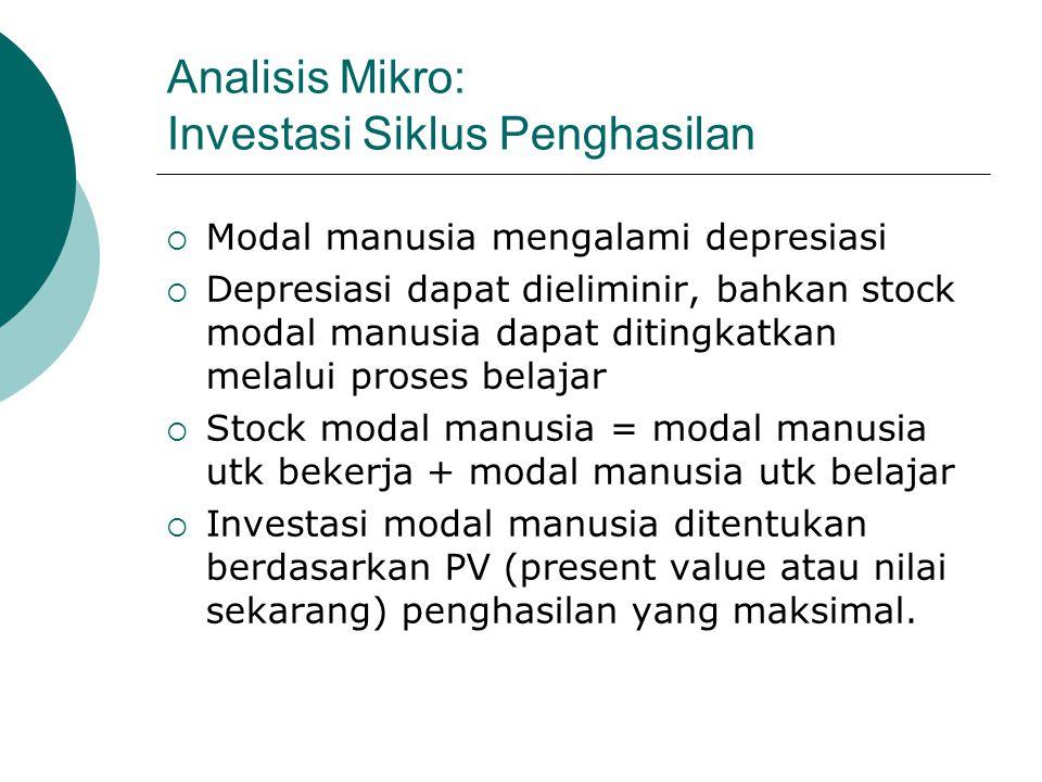 Analisis Mikro: Investasi Siklus Penghasilan
