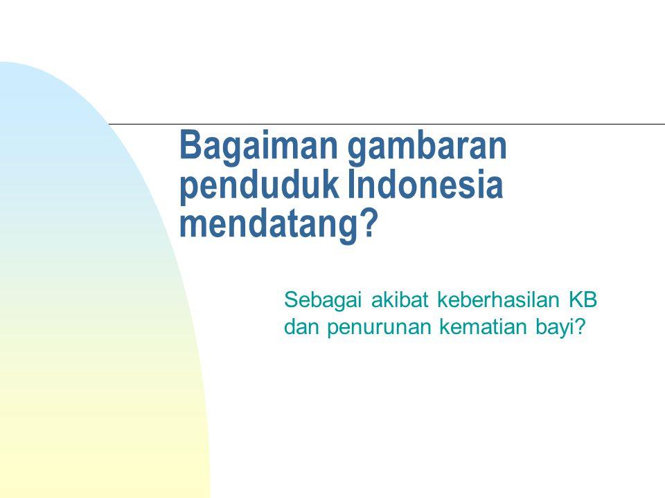 Bagaiman gambaran penduduk Indonesia mendatang