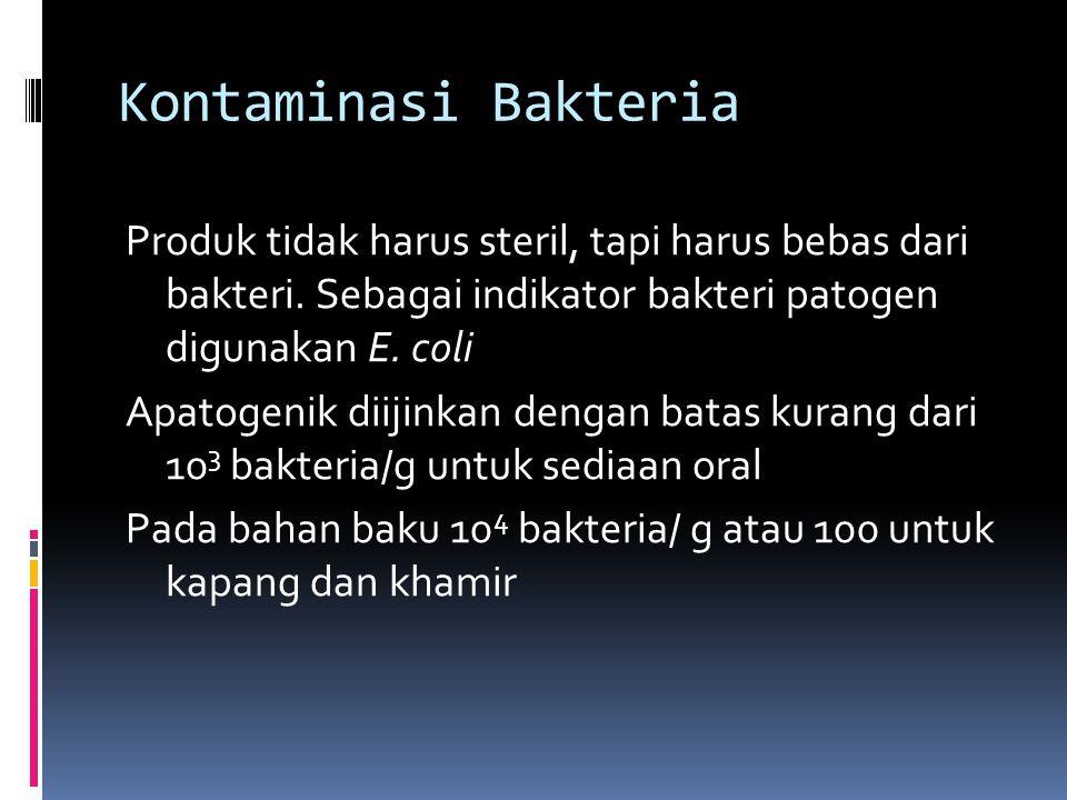 Kontaminasi Bakteria