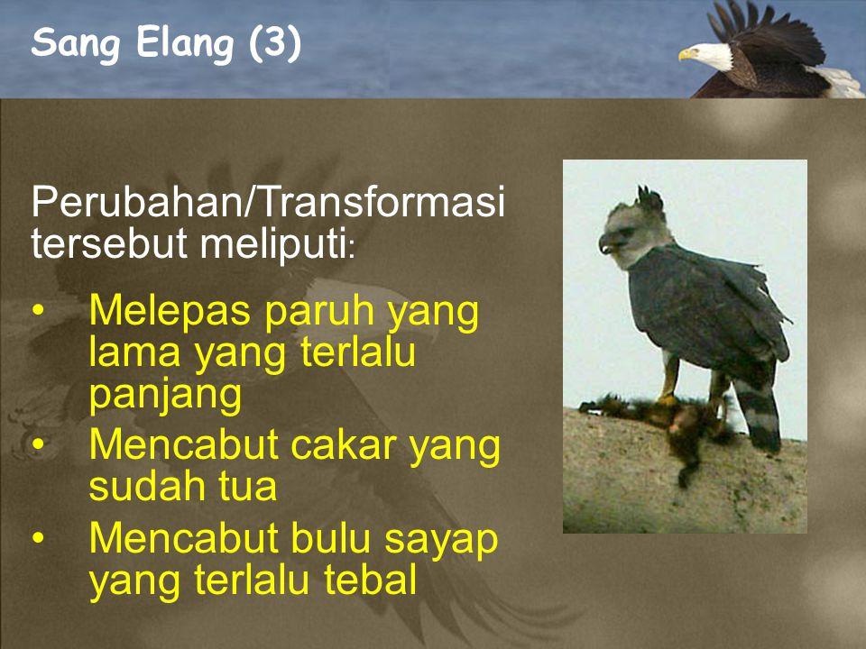 Perubahan/Transformasi tersebut meliputi: