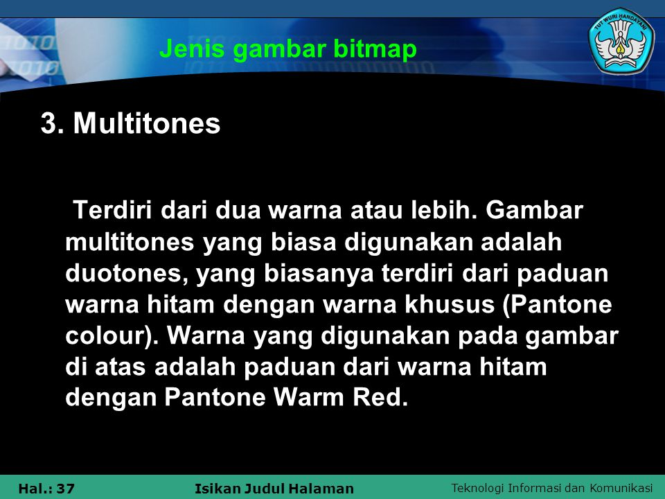 Jenis gambar bitmap 3. Multitones.