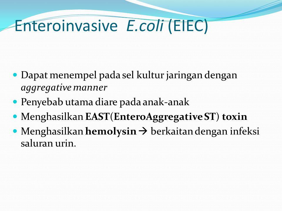 Enteroinvasive E.coli (EIEC)