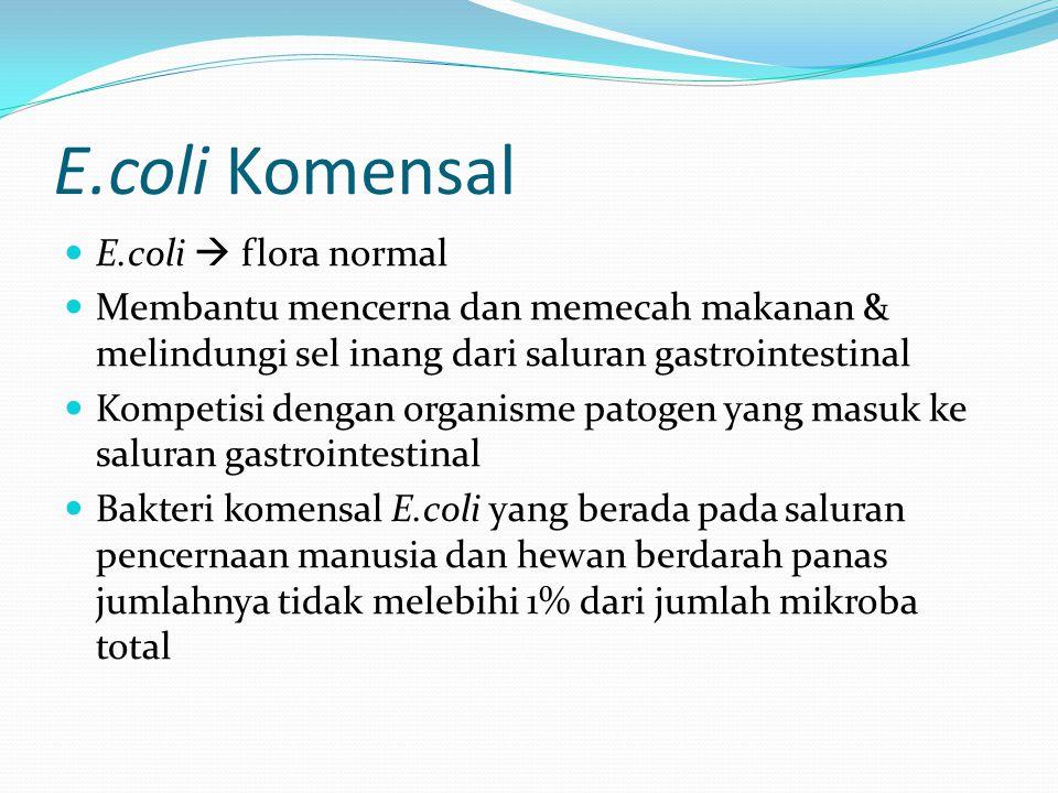 E.coli Komensal E.coli  flora normal