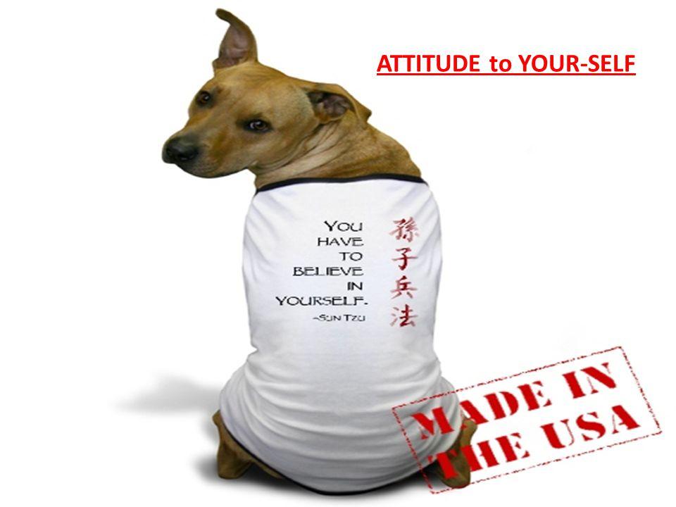 ATTITUDE to YOUR-SELF