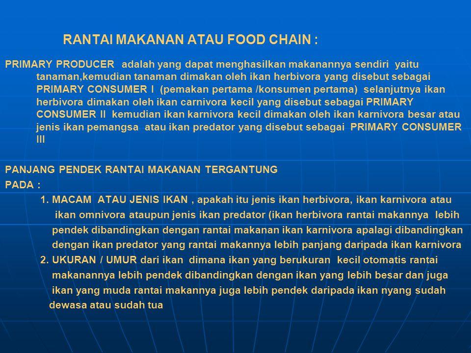 RANTAI MAKANAN ATAU FOOD CHAIN :