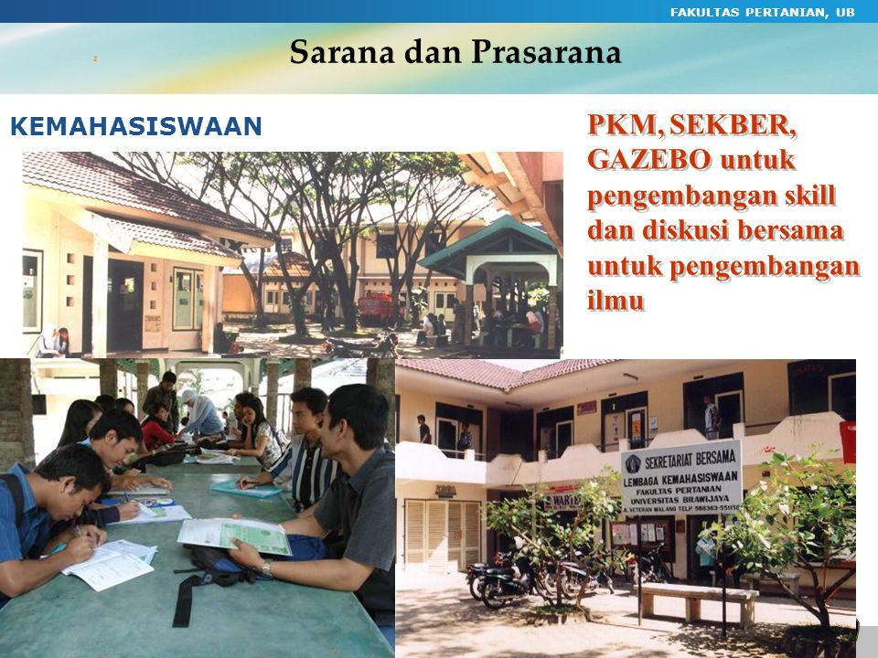Sarana dan Prasarana FAKULTAS PERTANIAN, UB. PKM, SEKBER, GAZEBO untuk pengembangan skill dan diskusi bersama untuk pengembangan ilmu.