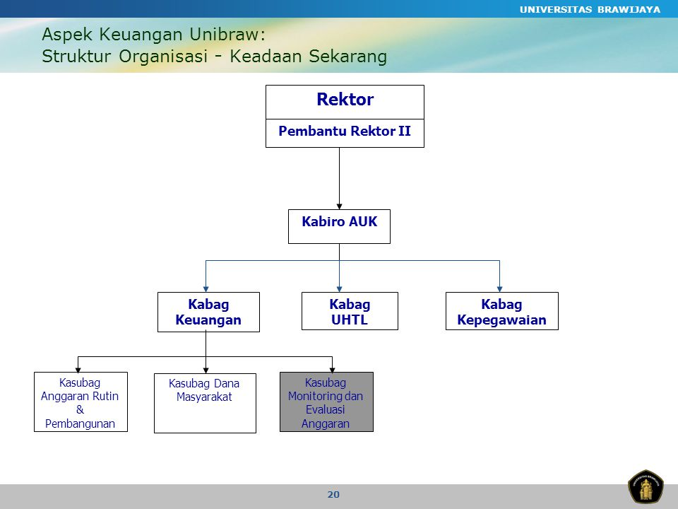 Aspek Keuangan Unibraw: Struktur Organisasi - Keadaan Sekarang