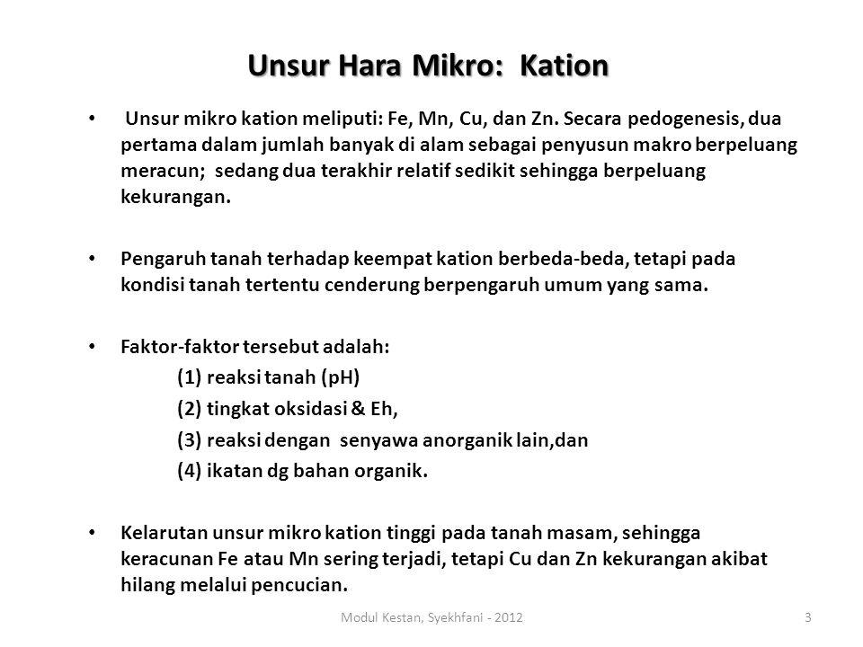 Unsur Hara Mikro: Kation