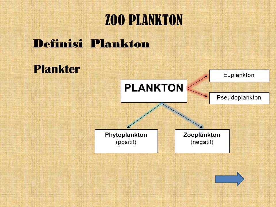 ZOO PLANKTON Definisi Plankton Plankter PLANKTON Euplankton