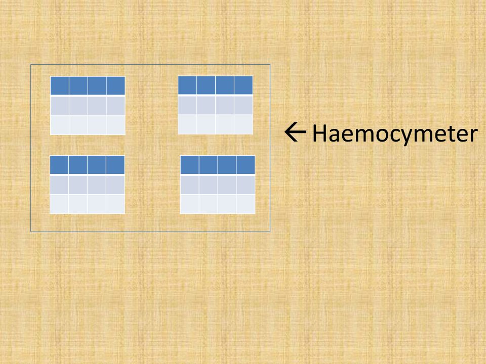  Haemocymeter