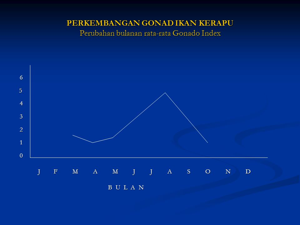 PERKEMBANGAN GONAD IKAN KERAPU Perubahan bulanan rata-rata Gonado Index