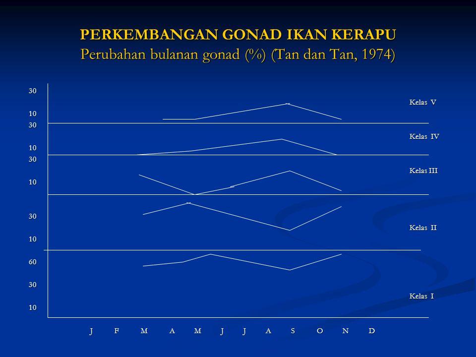 PERKEMBANGAN GONAD IKAN KERAPU Perubahan bulanan gonad (%) (Tan dan Tan, 1974)