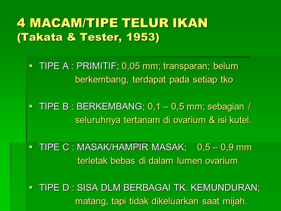 4 MACAM/TIPE TELUR IKAN (Takata & Tester, 1953)