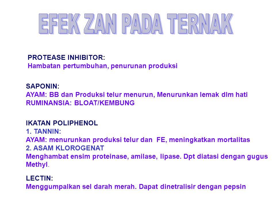 EFEK ZAN PADA TERNAK PROTEASE INHIBITOR: