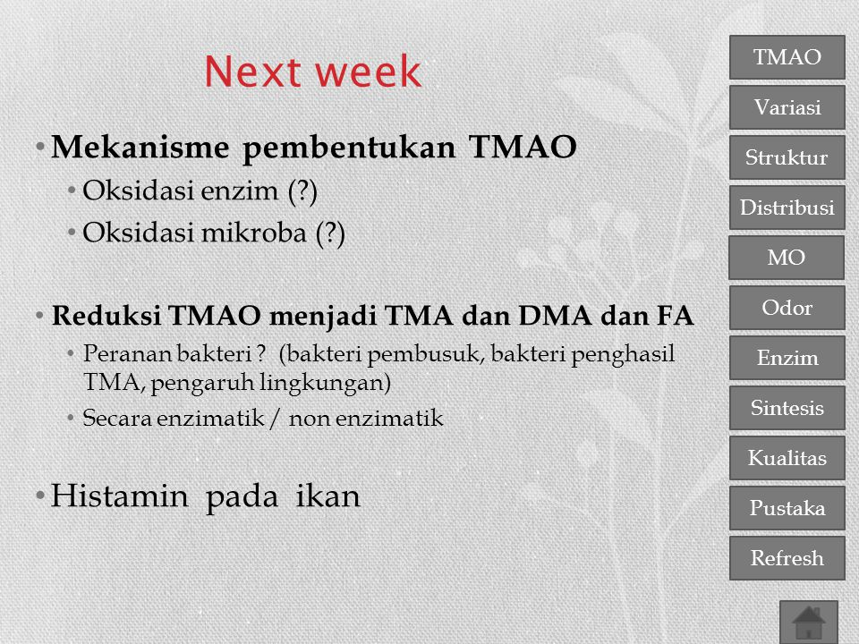 Next week Mekanisme pembentukan TMAO Histamin pada ikan