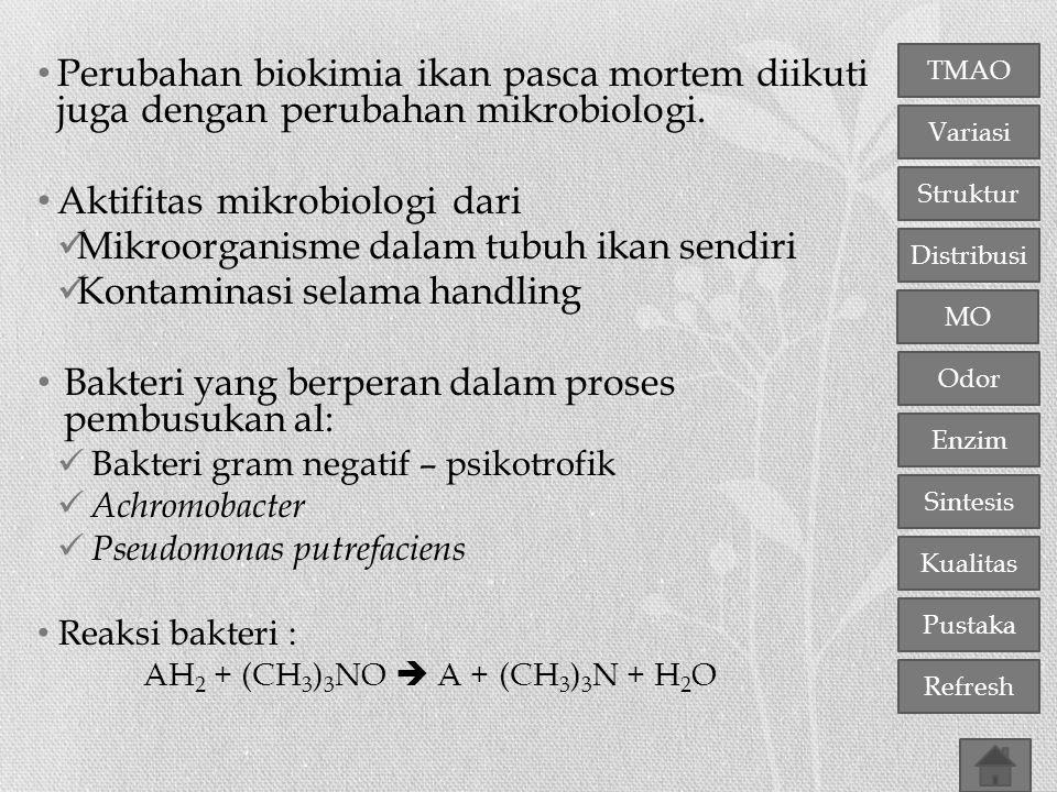 Aktifitas mikrobiologi dari Mikroorganisme dalam tubuh ikan sendiri