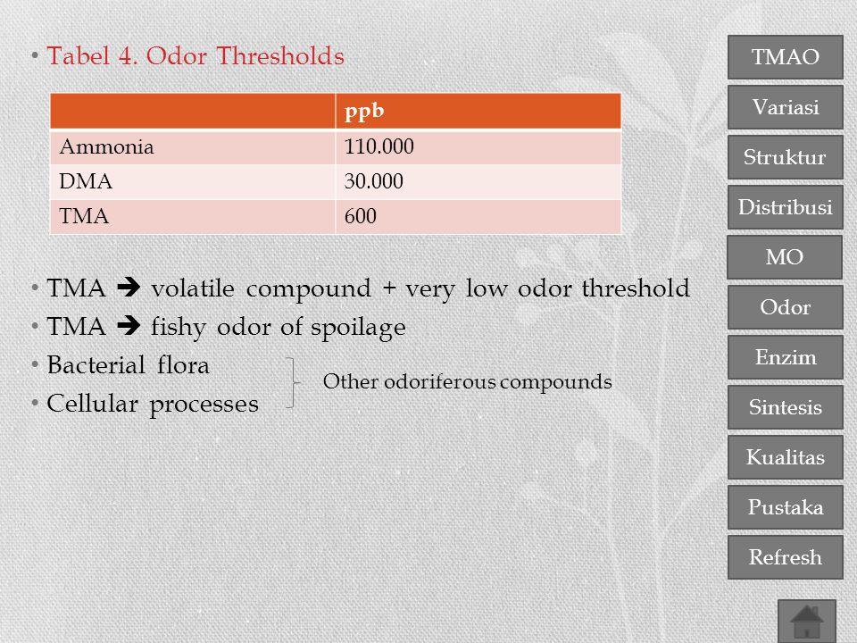 TMA  volatile compound + very low odor threshold