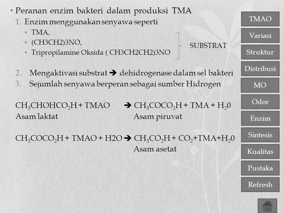 Peranan enzim bakteri dalam produksi TMA
