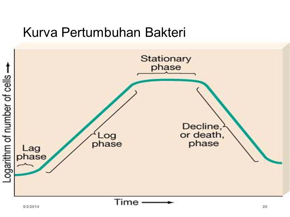 Kurva Pertumbuhan Bakteri