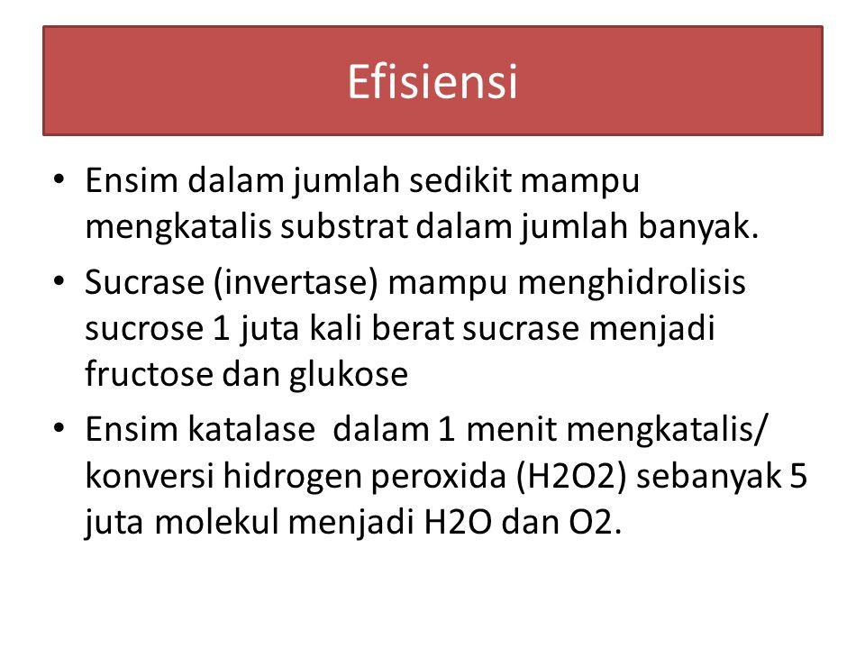 Efisiensi Ensim dalam jumlah sedikit mampu mengkatalis substrat dalam jumlah banyak.
