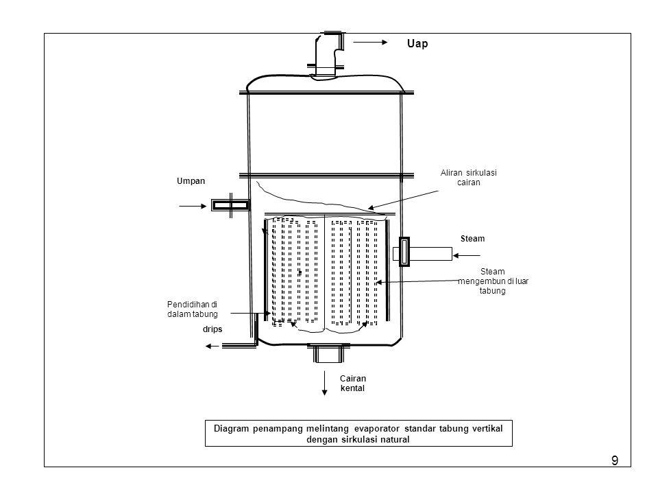 Uap Diagram penampang melintang evaporator standar tabung vertikal
