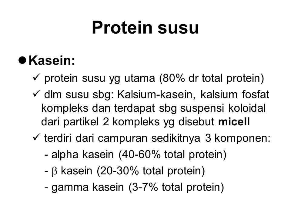 Protein susu Kasein: protein susu yg utama (80% dr total protein)