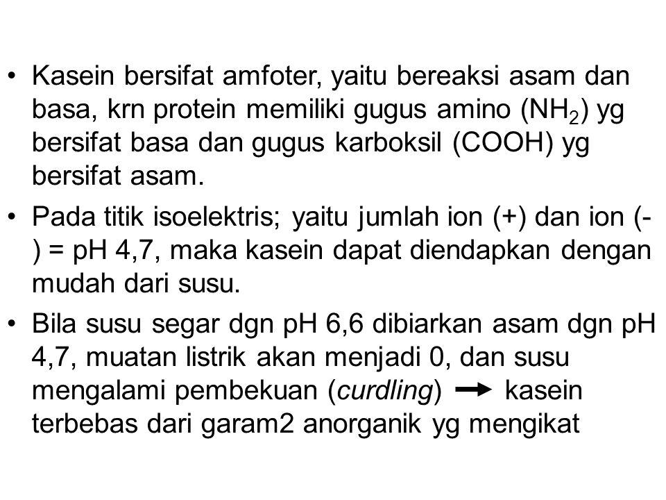 Kasein bersifat amfoter, yaitu bereaksi asam dan basa, krn protein memiliki gugus amino (NH2) yg bersifat basa dan gugus karboksil (COOH) yg bersifat asam.