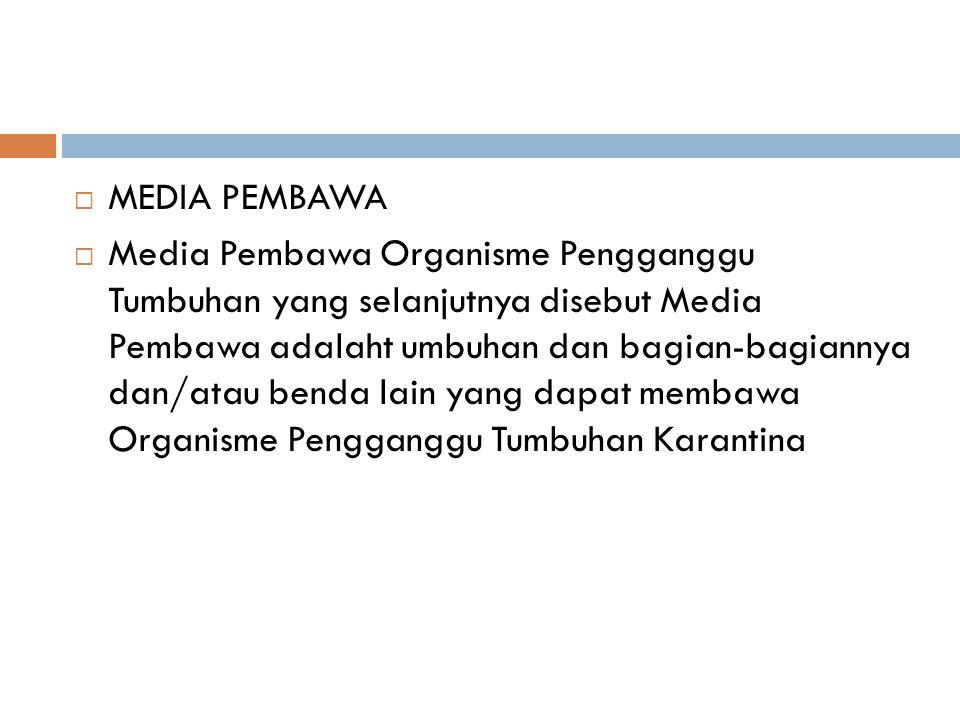 MEDIA PEMBAWA