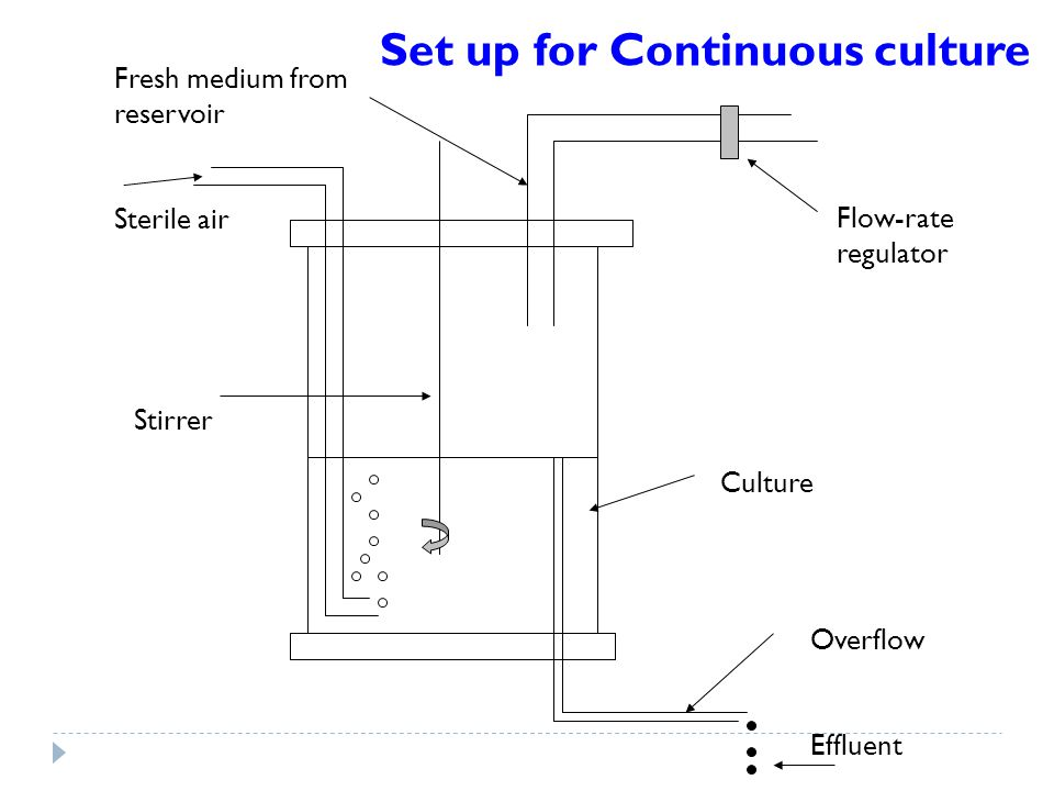 Set up for Continuous culture