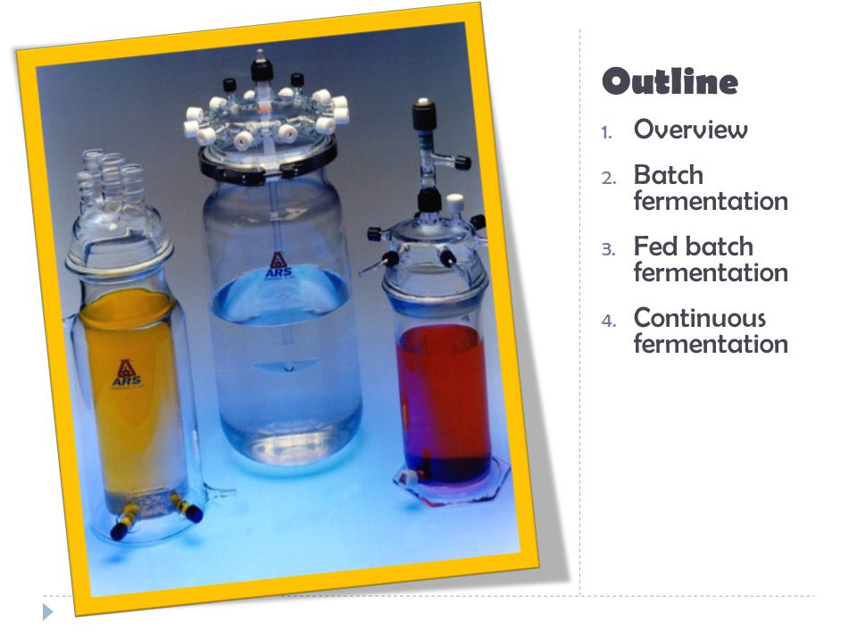 Outline Overview Batch fermentation Fed batch fermentation