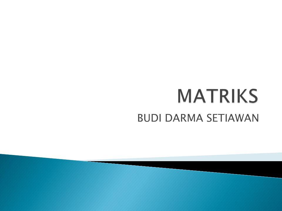 MATRIKS BUDI DARMA SETIAWAN