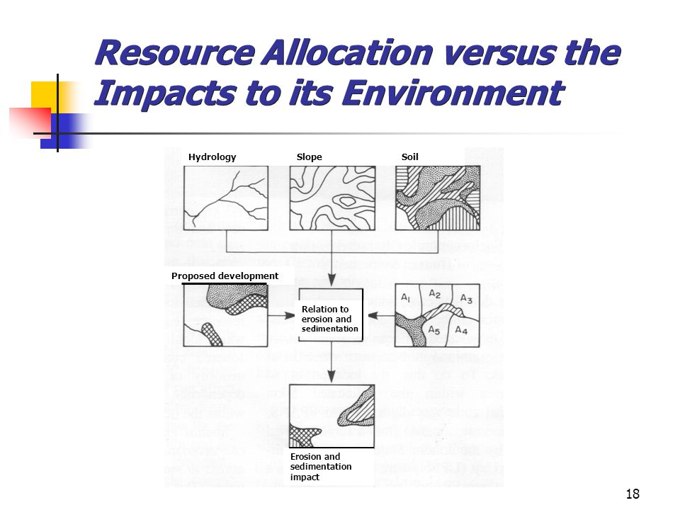 Resource Allocation versus the Impacts to its Environment