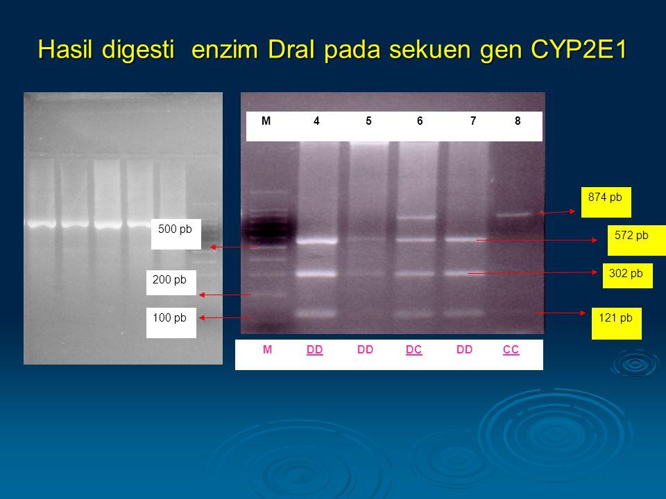 Hasil digesti enzim DraI pada sekuen gen CYP2E1