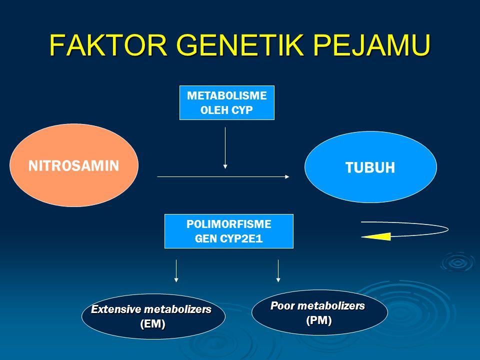 Extensive metabolizers