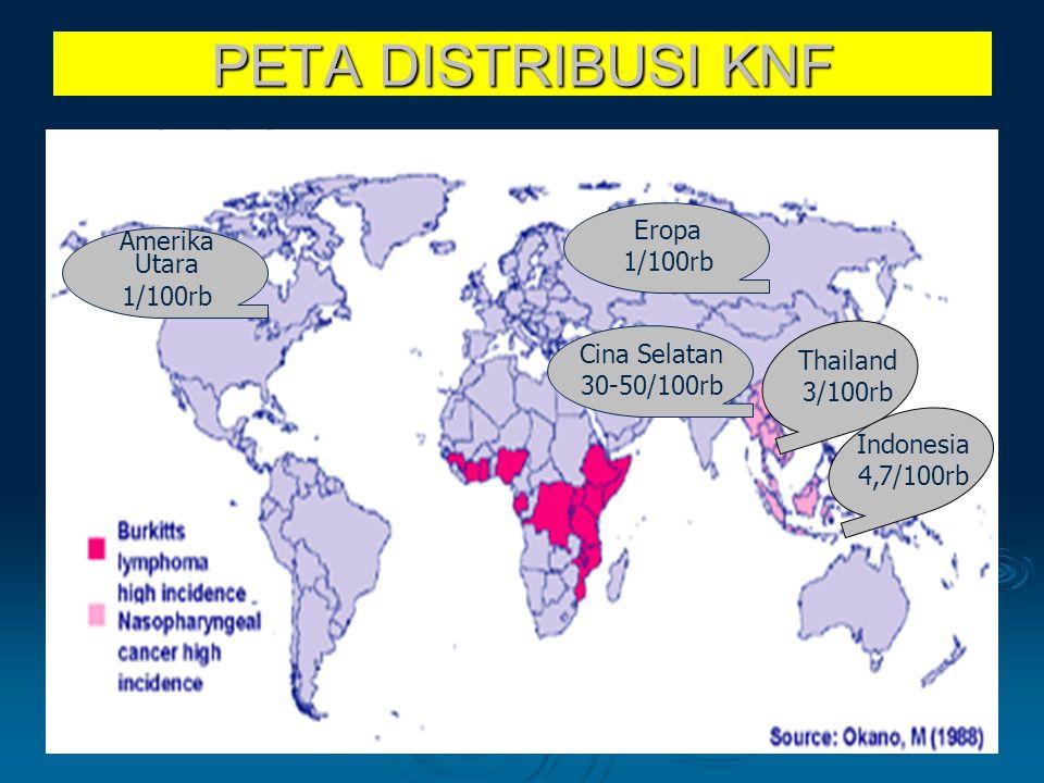 PETA DISTRIBUSI KNF Eropa Amerika Utara 1/100rb 1/100rb Cina Selatan