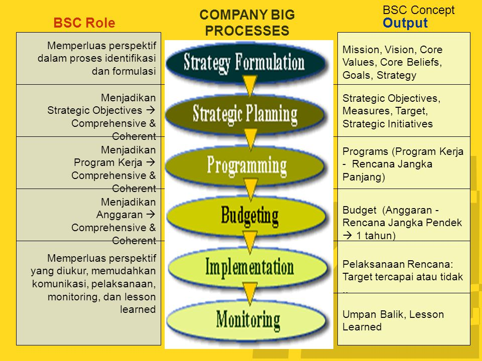 COMPANY BIG PROCESSES BSC Role Output BSC Concept