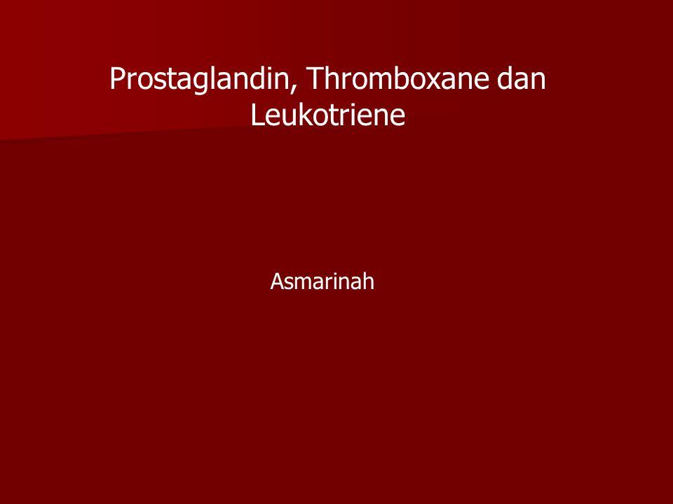 Prostaglandin, Thromboxane dan Leukotriene