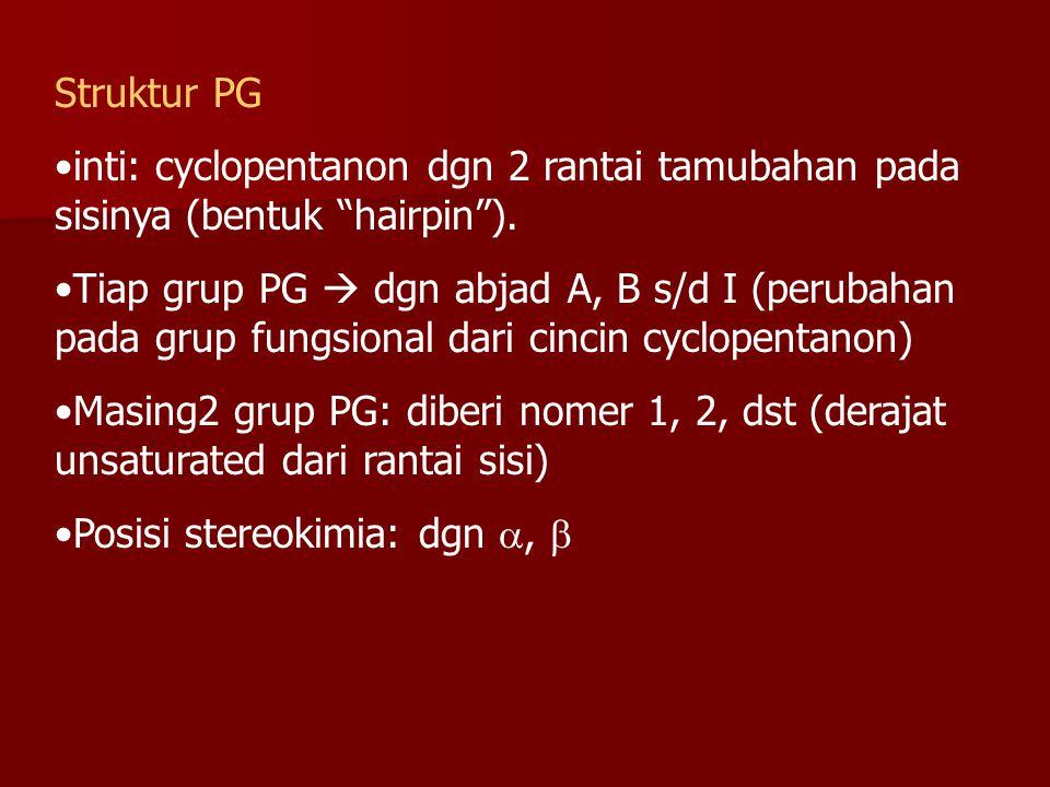 Struktur PG inti: cyclopentanon dgn 2 rantai tamubahan pada sisinya (bentuk hairpin ).