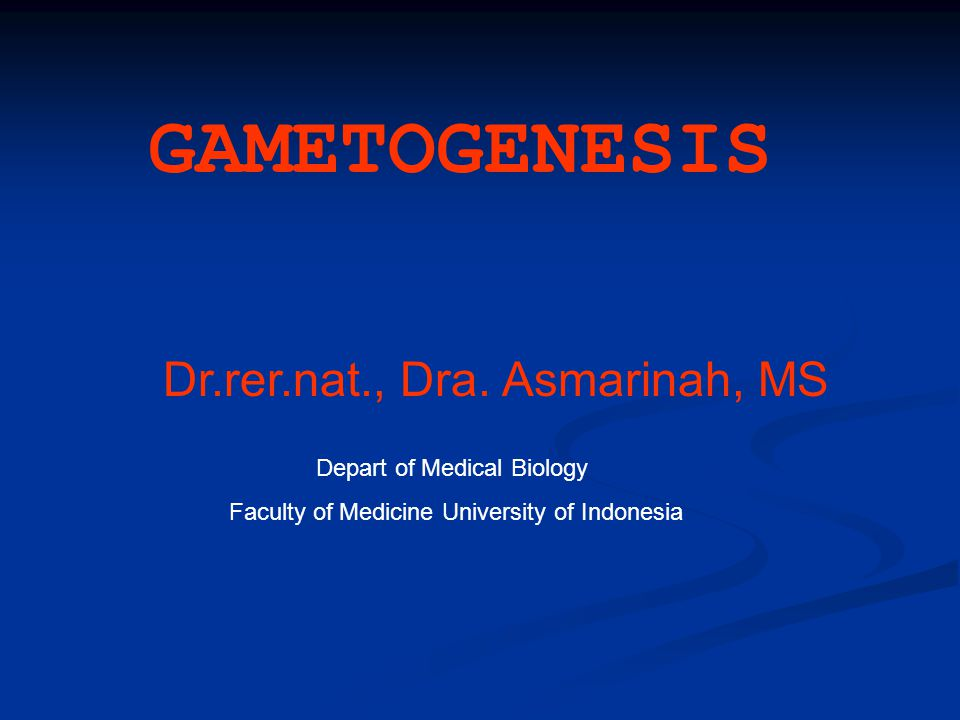 GAMETOGENESIS Dr.rer.nat., Dra. Asmarinah, MS