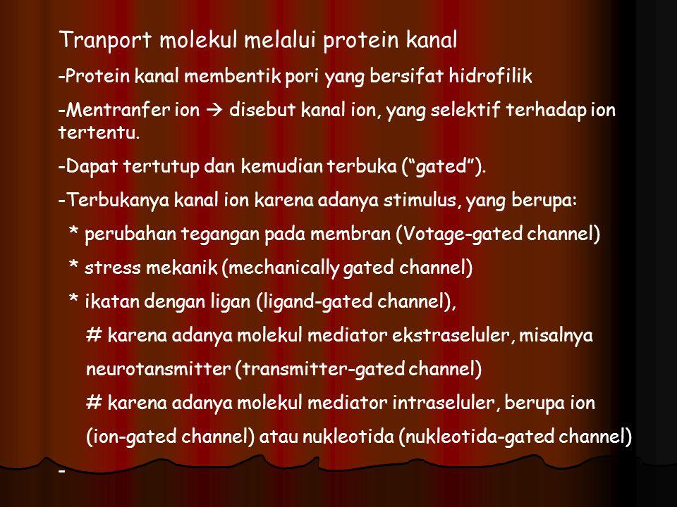 Tranport molekul melalui protein kanal