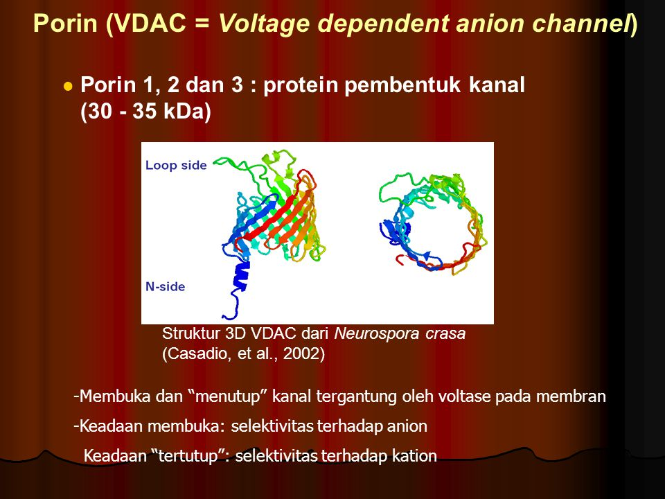 Porin (VDAC = Voltage dependent anion channel)