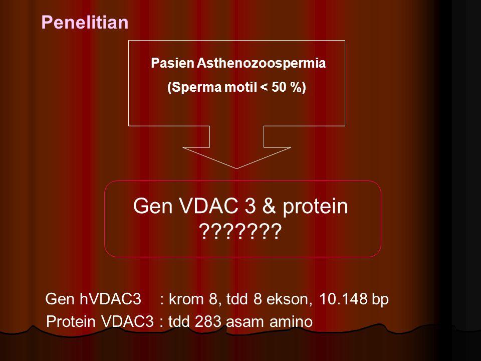 Pasien Asthenozoospermia