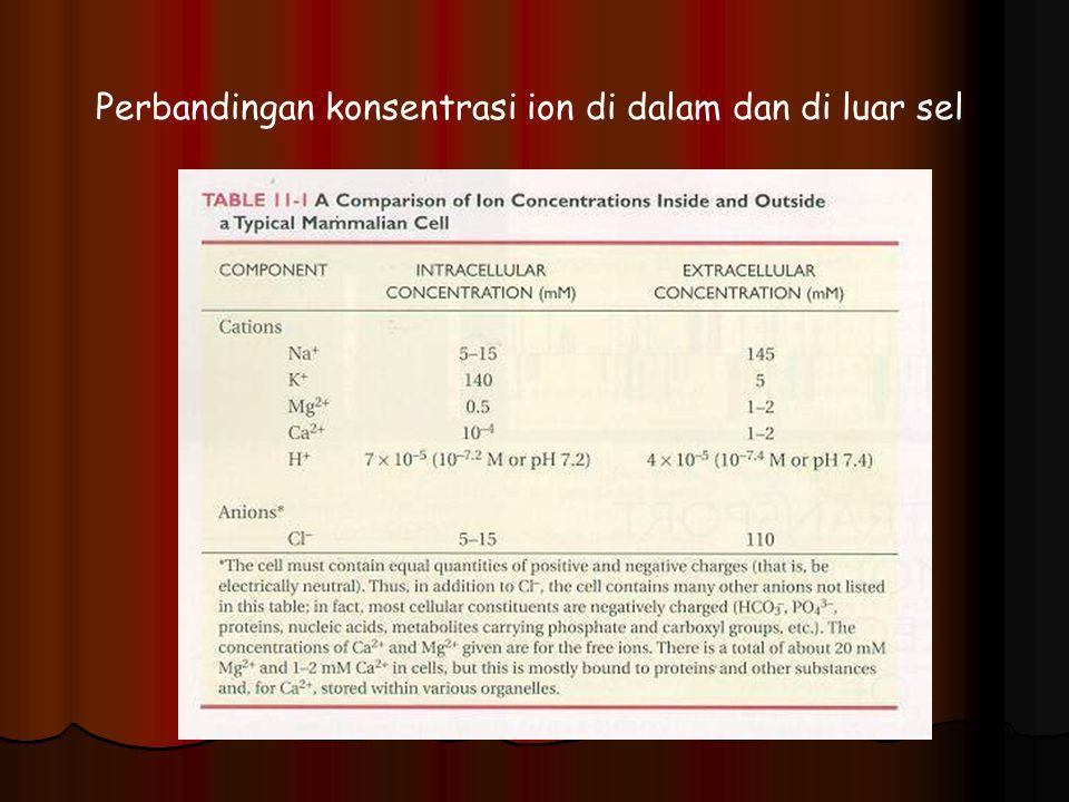 Perbandingan konsentrasi ion di dalam dan di luar sel