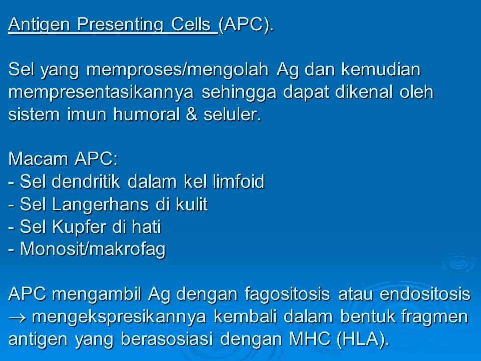 Antigen Presenting Cells (APC)