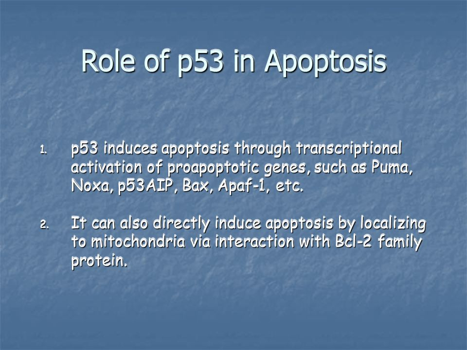 Role of p53 in Apoptosis